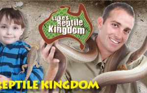 Luke's Reptile Kingdom at the Carrara Markets
